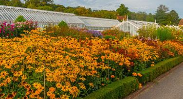 west-dean-gardens
